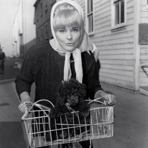 Elke Sommer and dog ride a bike.