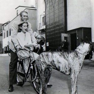 James Stewart and Grace Kelly ride a bike, pulled by Rosemary Clooney's Great Dane.
