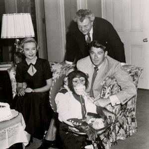 Bonzo rides a trike. Diana Lynn, Walter Slezak and Ronald Reagan look on.