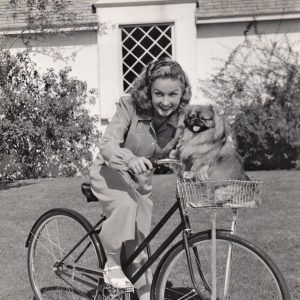 Bonita Granville and Peke ride a bike.