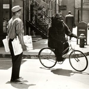 A bear rides a bike. Or Sid Kane, in bear suit, to be exact.