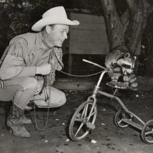 Raccoon rides a trike, Roy Rogers takes the lead.